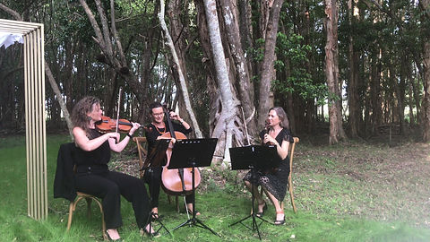 First Sun Strings play Pachelbel's Canon