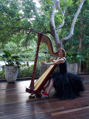 Margaret Curtis Harp.jpg