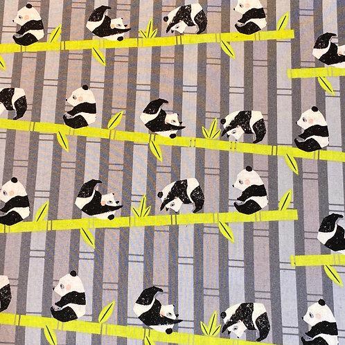 Declan's Pandas