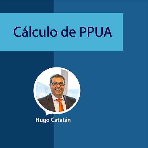 Cálculo de PPUA