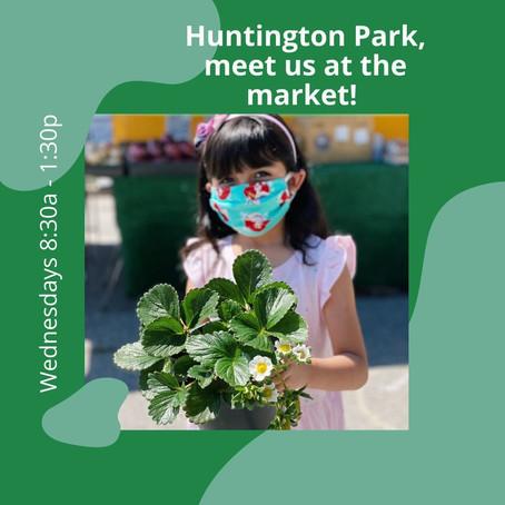 Hunting Park Farmers Market