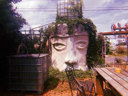 The Magical Open Kitchen Sculpture Garden