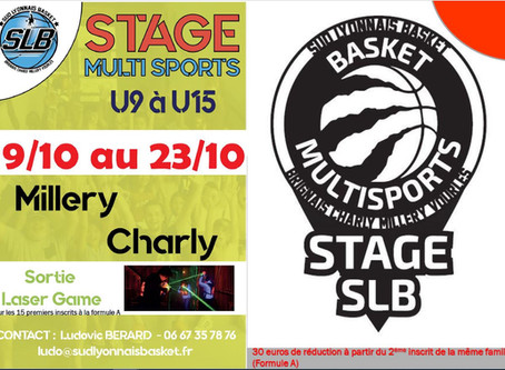 Stage basket - Multi-sport