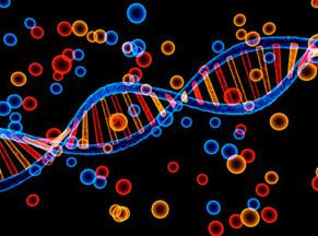 Tema 4. La revolución genética
