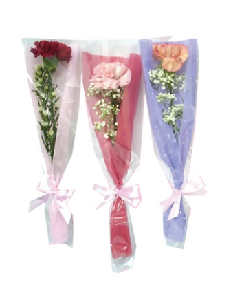 Single Wrapped Carnation