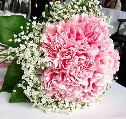 Carnation Bouquet - Pink