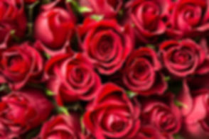 red-roses-wallpaper.jpg