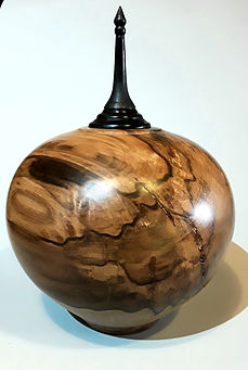 Hollow vessel in Black Hearted Sassafras