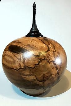 Hollow vessel in Black Hearted Sassafras