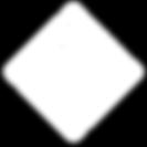 NAGGL Logo White (1).png