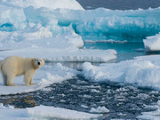 Climate Change and Security in the Arctic