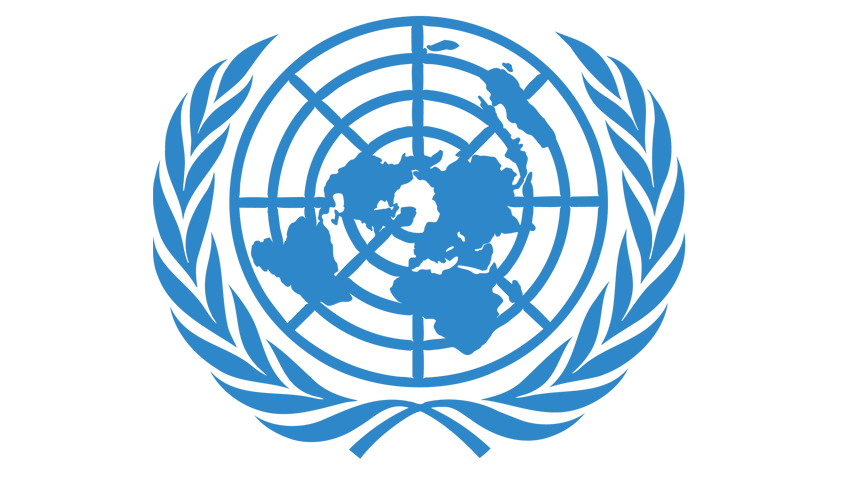 UN Plan of Action to Counter Violent Extremism (p. 12 - 22)