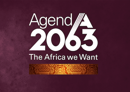 Agenda 2063: The Africa We Want (Cont.)