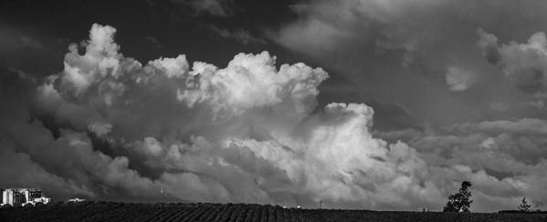 clouds over a potato field rishon le zion