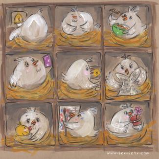 Quarantine Chickens
