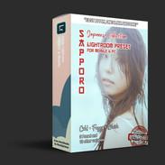 product-box-mockup SAPPORO.jpg