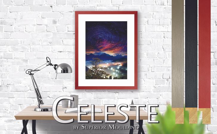 Celeste website interior.jpg
