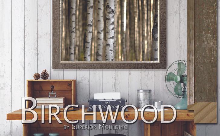 Birchwood homepage interior.jpg