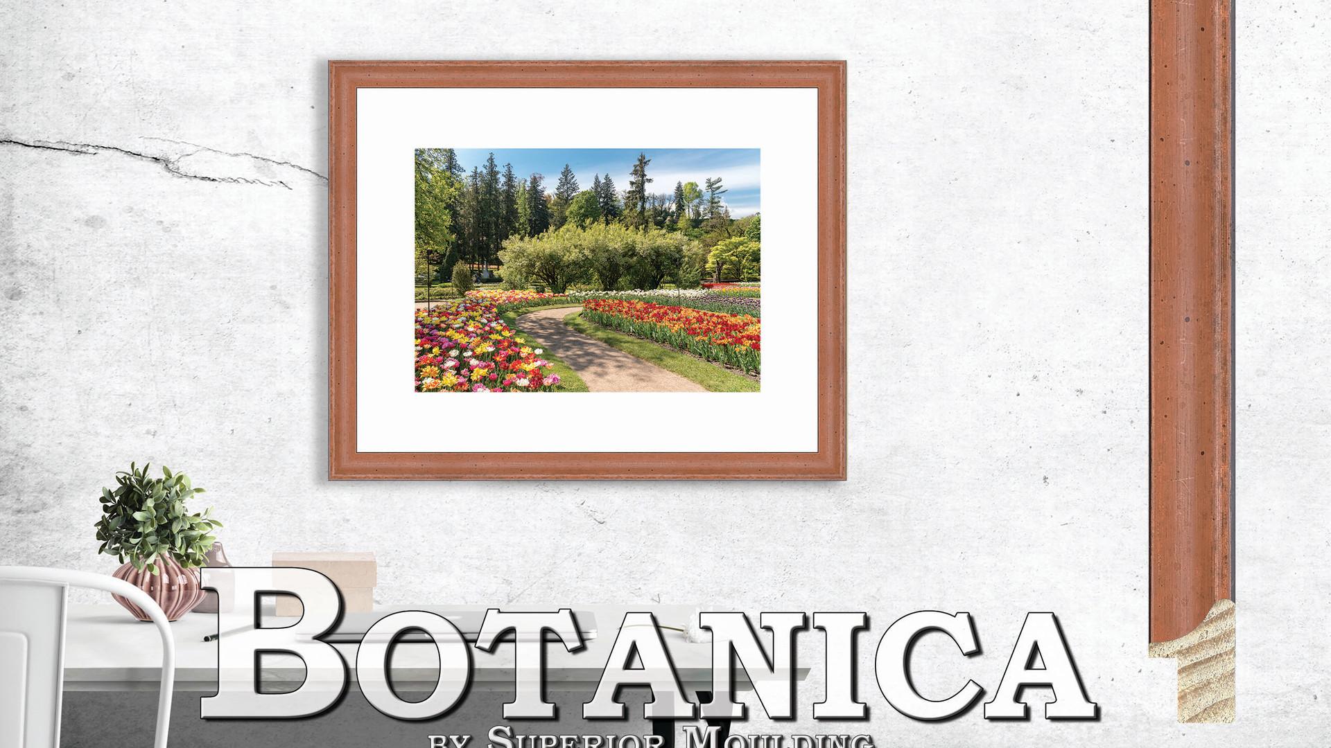 Botanica Moulding