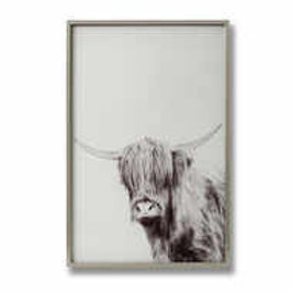 Highland Cow Left Facing Glass Image in Silver Frame - Large