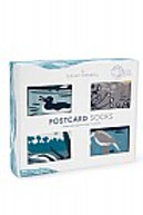 Seasalt Ladies Postcard Socks 4 in box