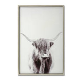 Highland Cow Right Facing Glass Image in Silver Frame - Large