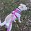 Thumbnail: Pechera para perro 002