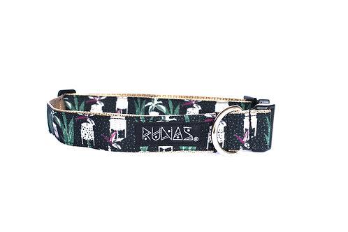 Collar de perro Clásico 021