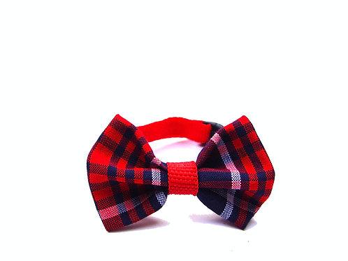 Collar de Perro Preppy 001-XS