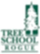 TS Rogue logo(1).png