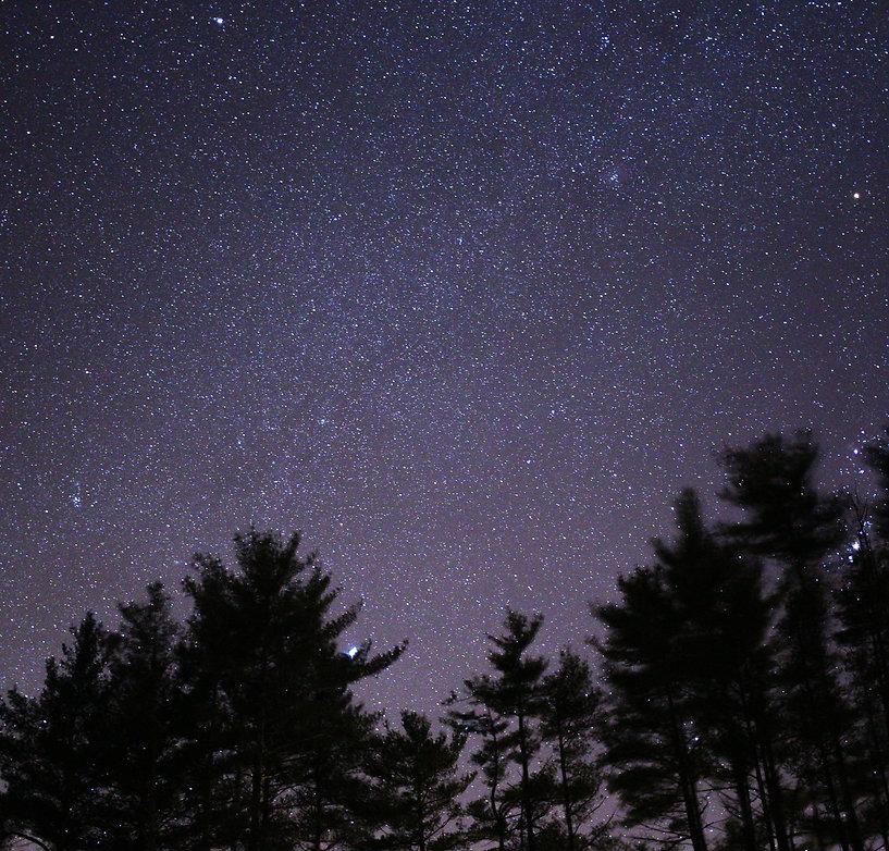 nature-stars-sky-trees-90740.jpeg
