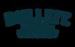 בולט לוגו-01.png