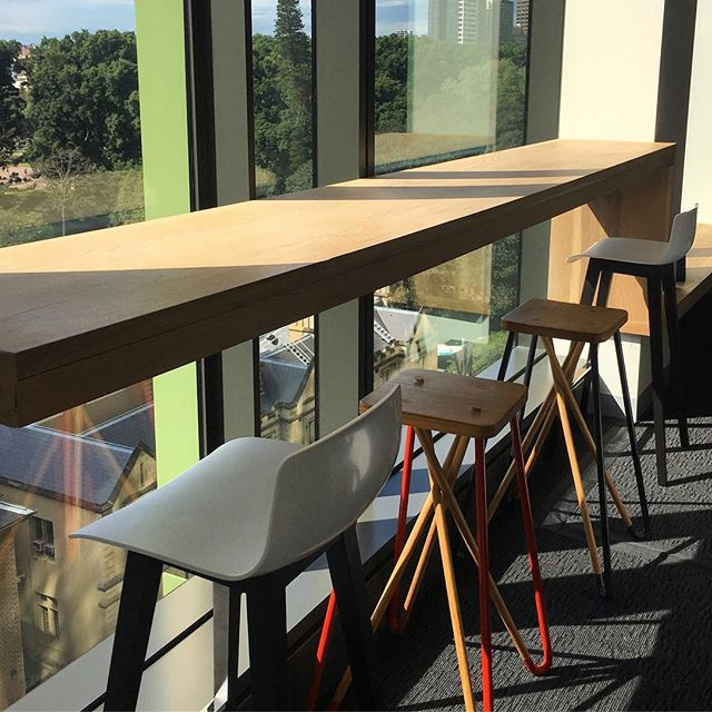 #dailydetail- sun streaming through the windows looking out over Hyde park at our affiliate space in Sydney _workclubglobal - Iooking forwar