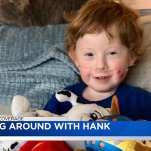 Horsing Around with Hank