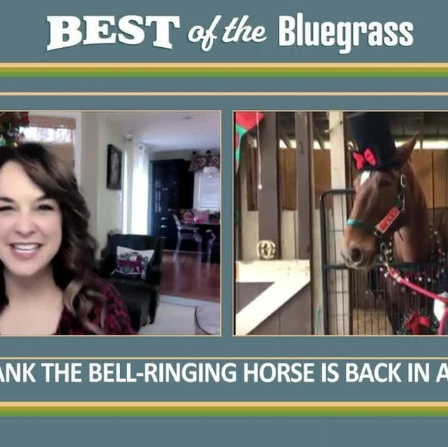 Hank the Bell-Ringing Horse is Back in Action!