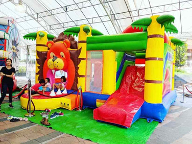 Lion-Bouncing-Castle-Rental.jpg