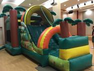 Jungle Bouncy Castle.jpeg