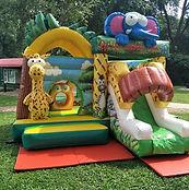 Safari Park Bouncy Castle.jpg