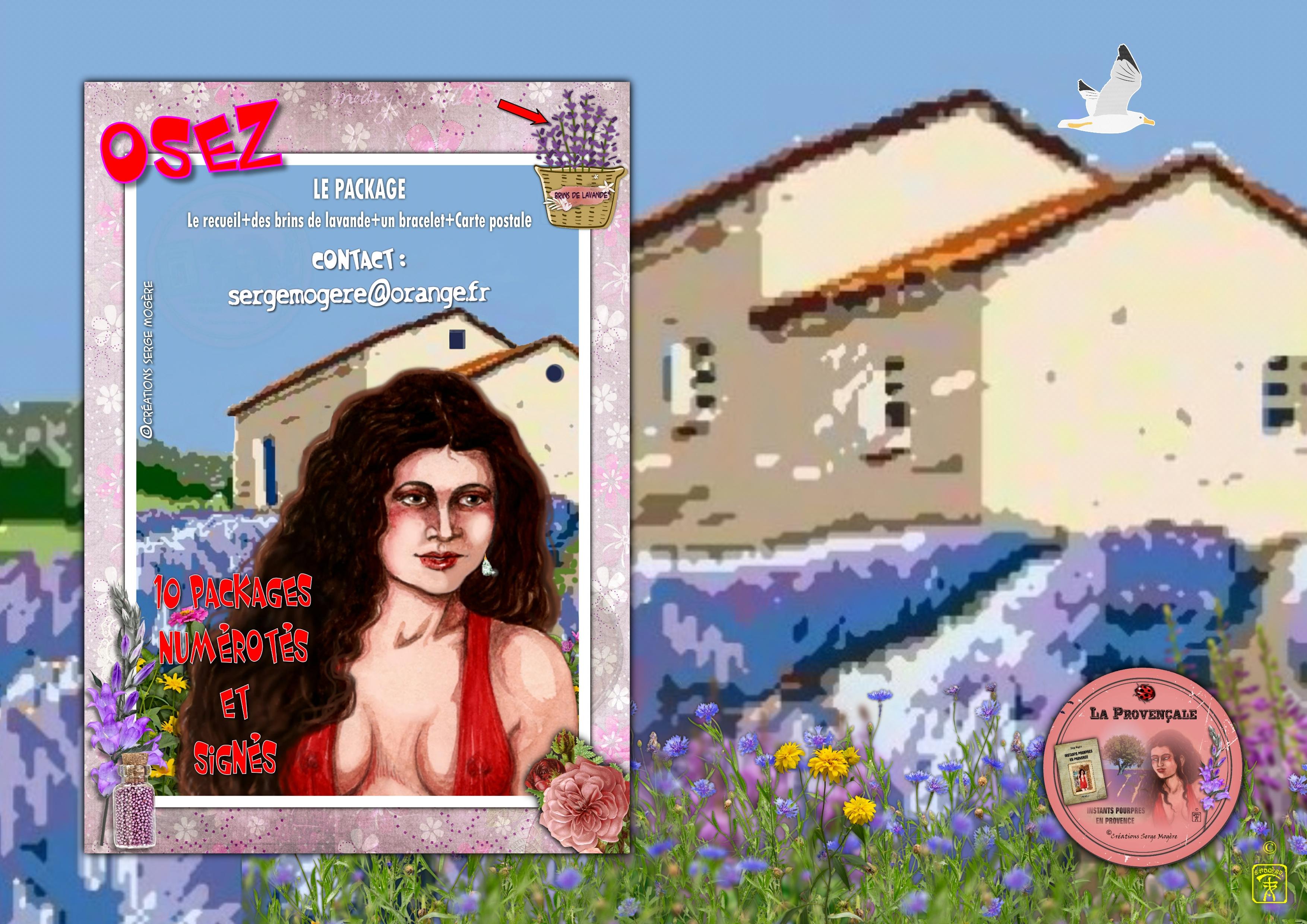 Osez_la_provençale01.jpg