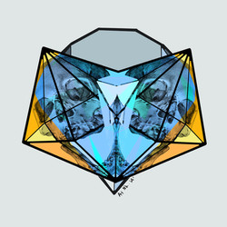 Mirrored Diamond Beauties