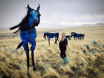 Finding the Bleu Horses of Montana