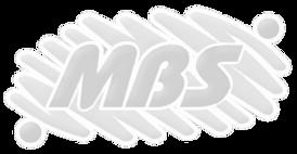 mbs%20toldos_edited.png