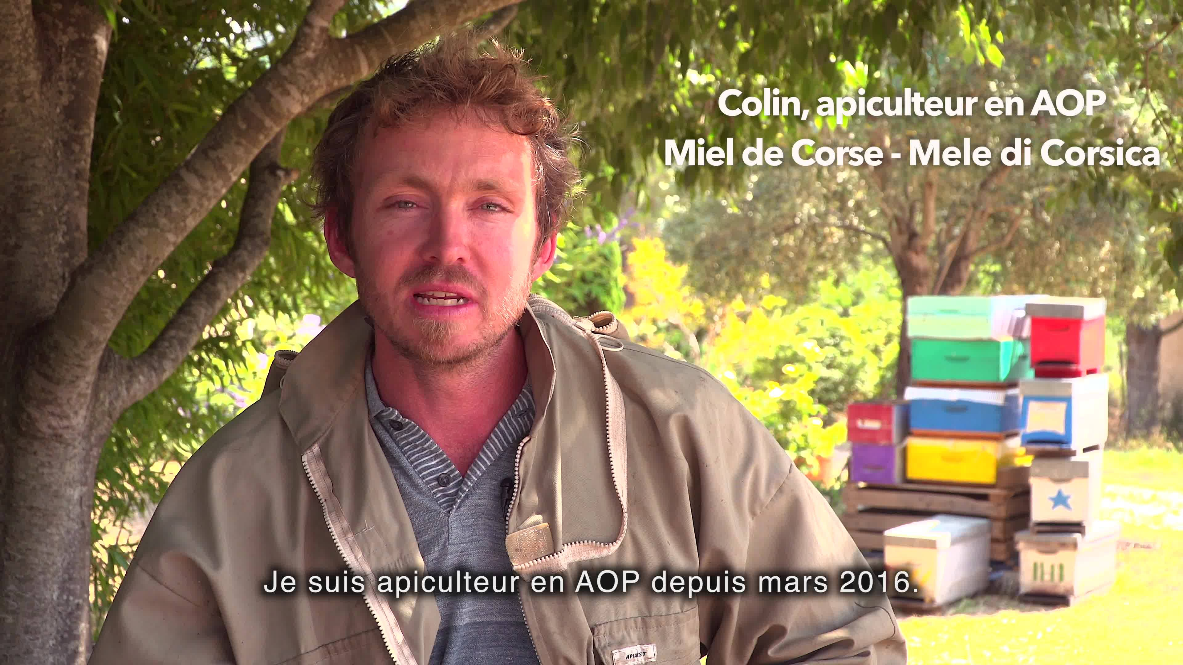 Portrait d'apiculteur en AOP Miel de Corse - Mele di Corsica : Colin DUPRE, apiculteur à Calenzana