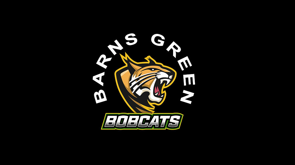 Bobcats Logo.jpg
