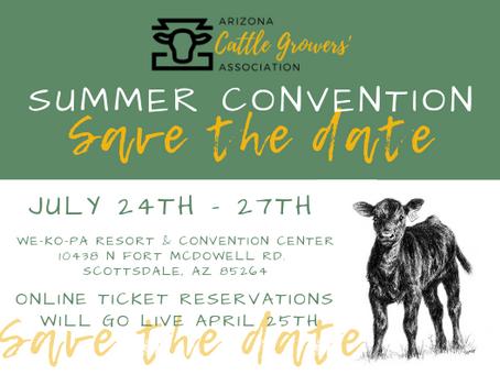 Convention, Convention, Convention...