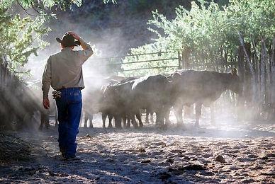 Farm Credit Foundations