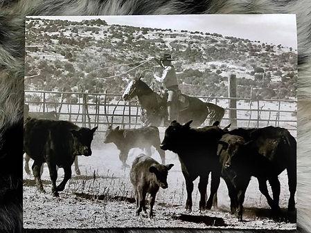 Cattle Growers Association