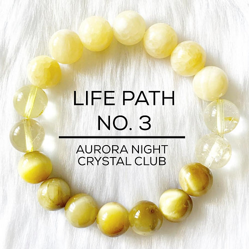 Life Path 3
