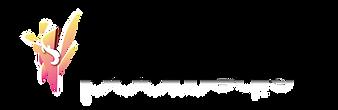 boomedia-logo.png