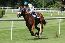 action-athlete-competition-158976.jpg
